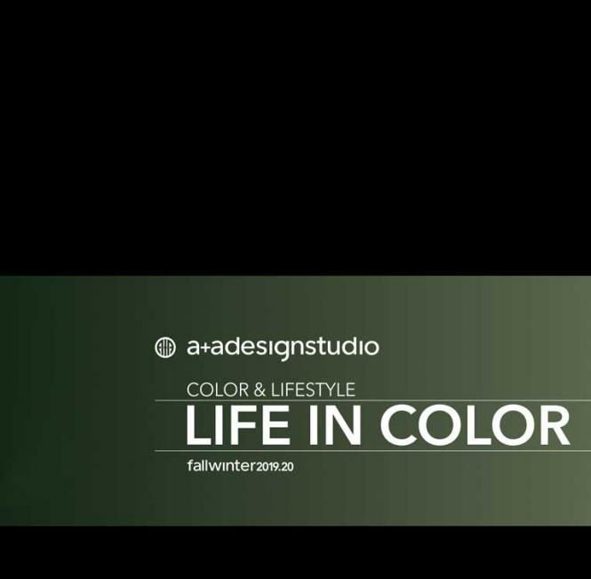 A + A Life in Color - Abonnement Europa