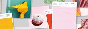 SMART Color Swatch Cards (TCX/Cotton)