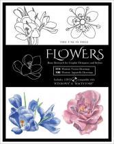 Flowers incl. DVD